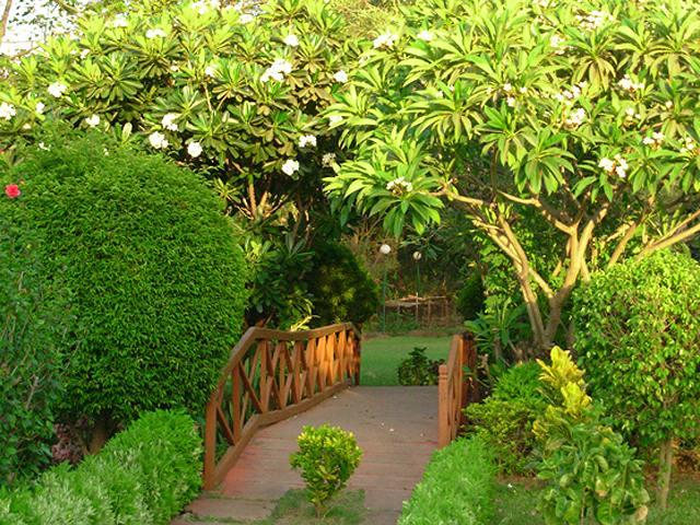 16silvassa44_hirwa-van-garden