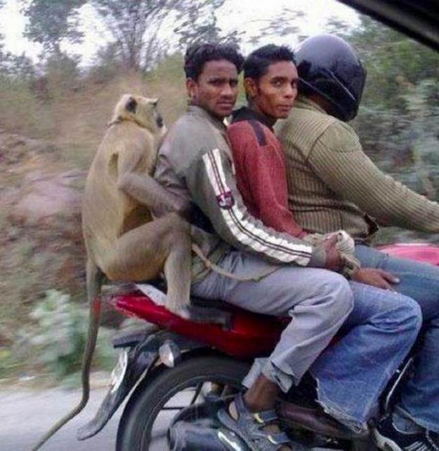 These-Weird-Things-Happens-Only-in-India-024