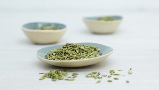 fennel_seeds_16x9