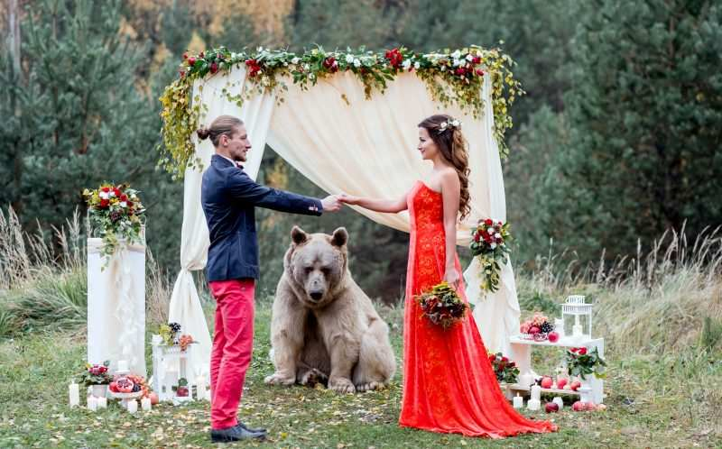 8_CATERS_BEAR_WEDDING_06-800x498