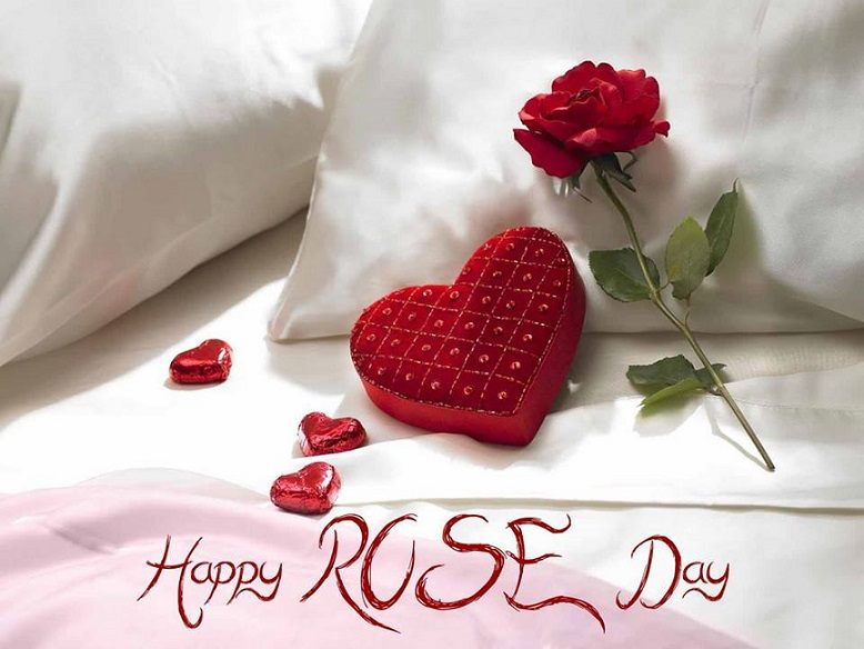 Rose Day 2016 Images for Whatsapp